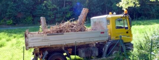 Baumstümpfe entfernen Ravelsbach